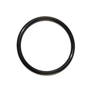 O-ring till lock (Corneliusfat)