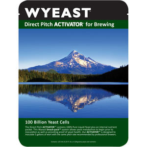 Wyeast 1272 All-American Ale