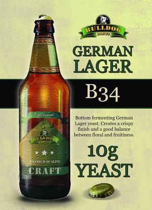 Bulldog B34 German Lager