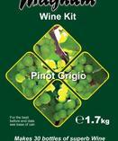 Magnum Pinot Grigio - Vinsats (14 dagar)