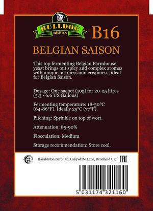 Bulldog B16 Belgian Saisson